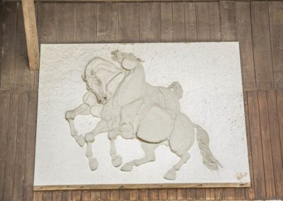 Pension Chevaux Geneve